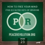 Artwork for Peace Revolution episode 023: How to Free Your Mind / The Occulted Keys of Wisdom