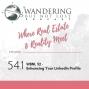 Artwork for Episode 54.1:  WBNL 52 - Enhancing Your LinkedIn Profile