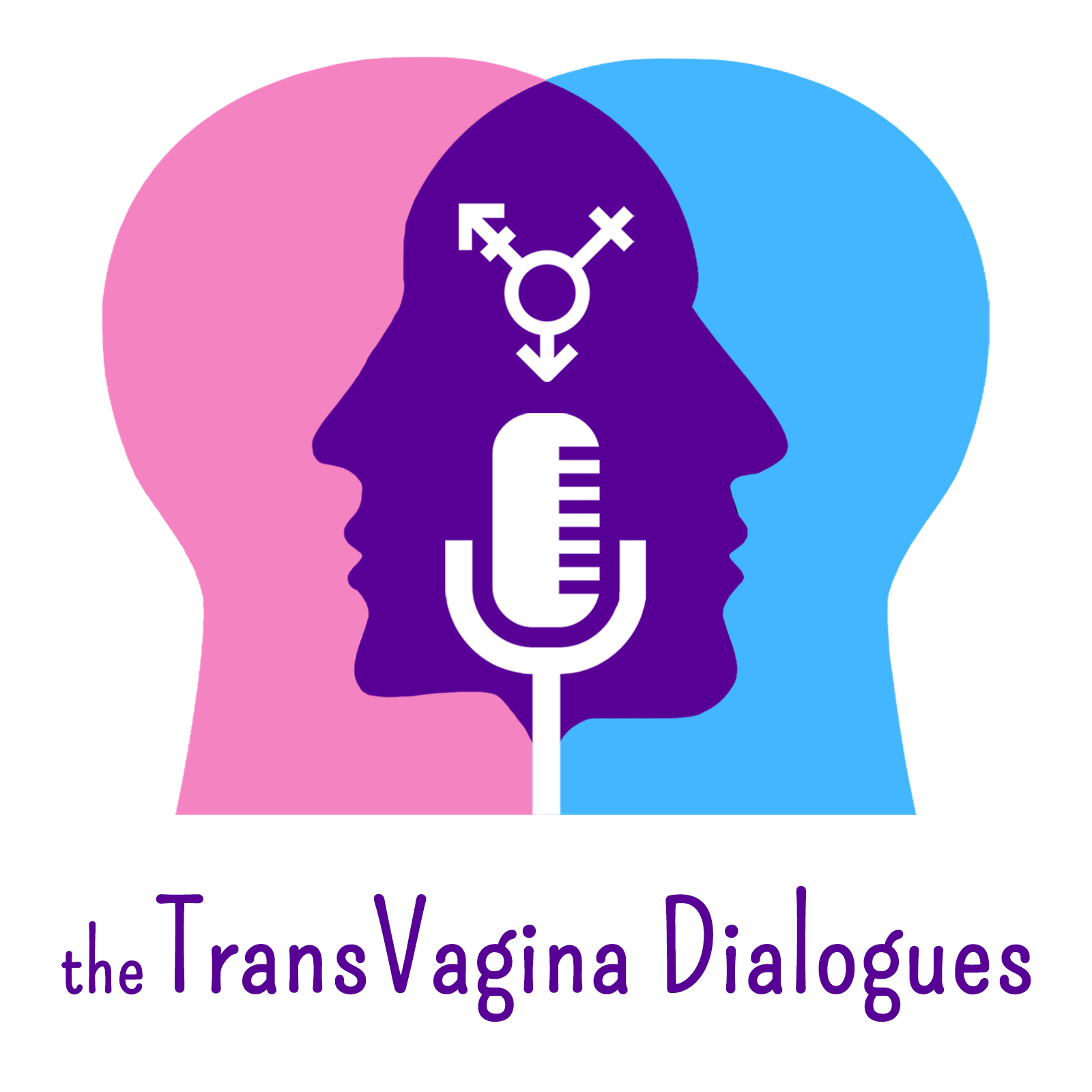 Trans Vagina Dialogues show art