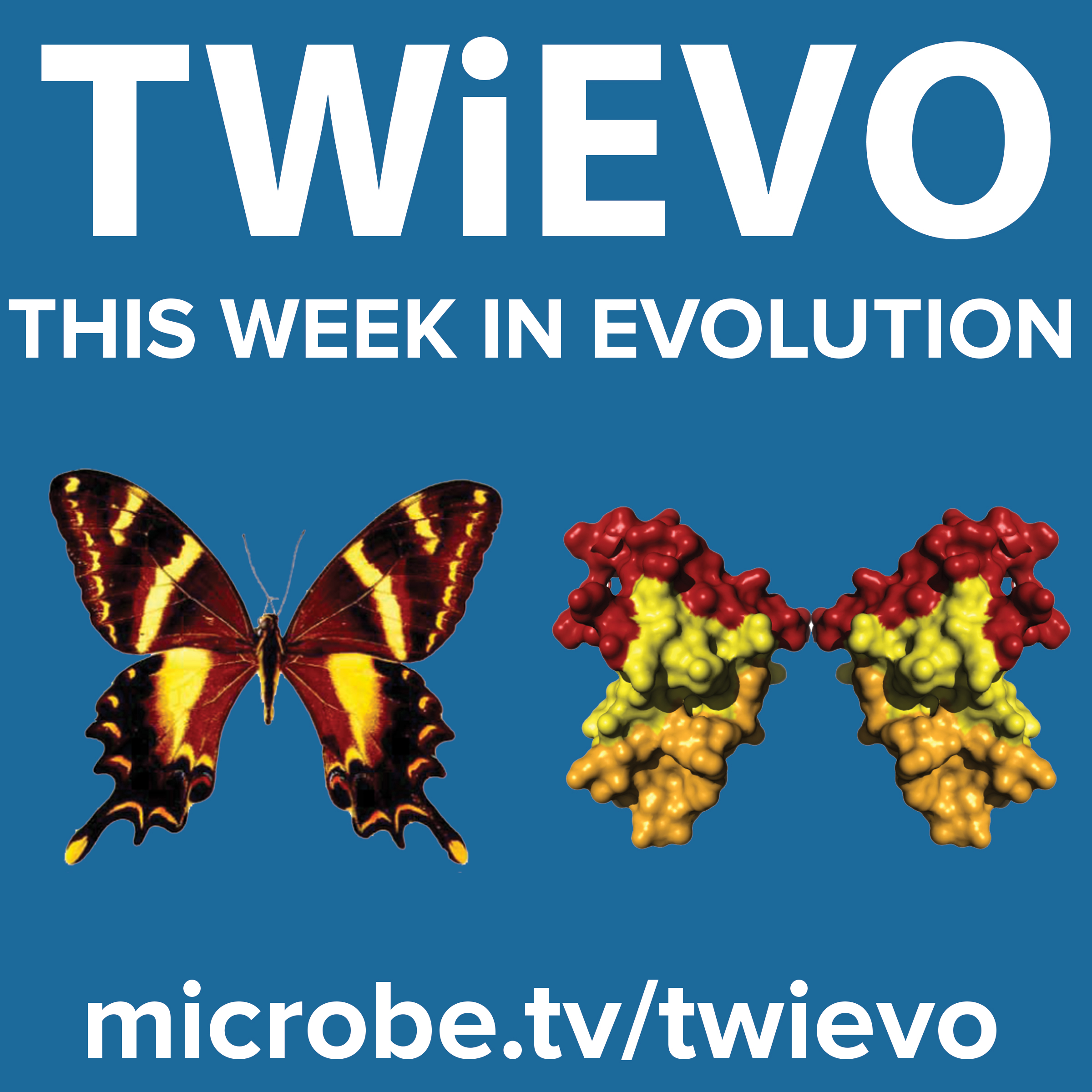 This Week in Evolution show art