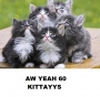 Artwork for Aw Yeah 60 KITTAAYYS