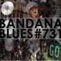 Artwork for Bandana Blues #731 - The Usual Stuff
