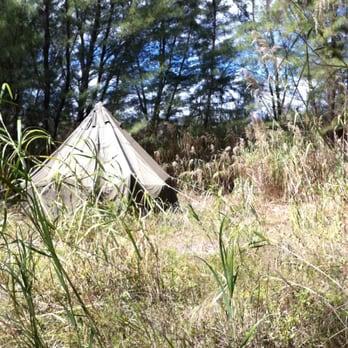 Campsite in August