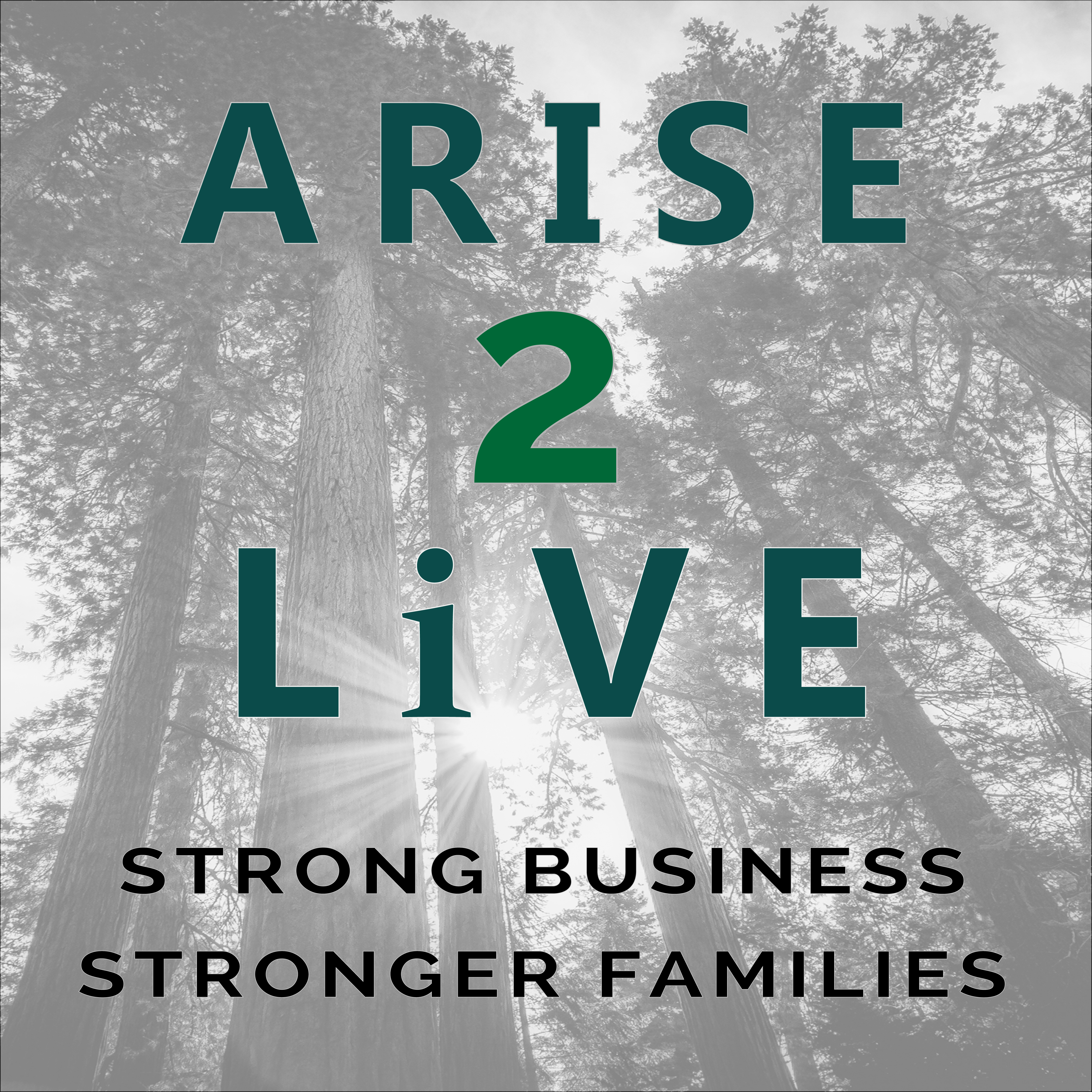 Arise 2 Live Podcast show art