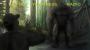 Artwork for Bigfoot Eyewitness Episode 88