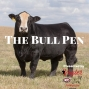 """Artwork for Les Skypes in to Introduce a Replay of """"The Bull Pen"""""""