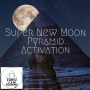 Artwork for Super New Moon Pyramid Activation