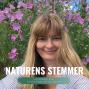 Artwork for Doreen Møller Holmquist: Natur og Stress