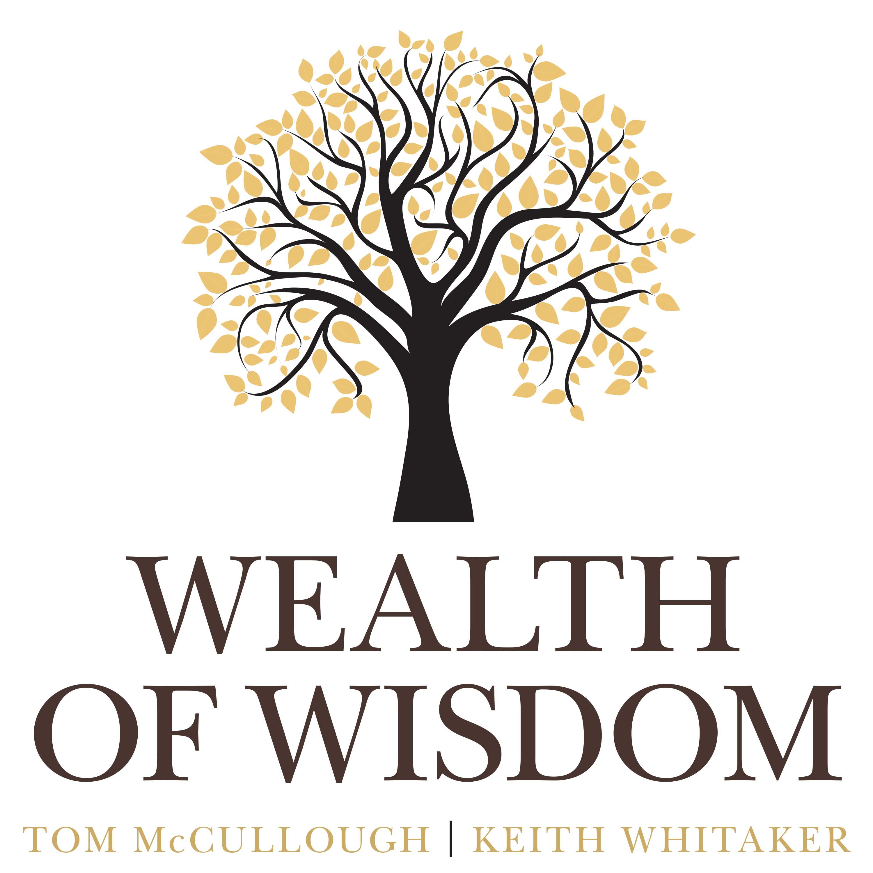 Artwork for Tom McCullough and Keith Whitaker – Reflections on the First Year of Wealth of Wisdom