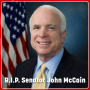 Artwork for Senator John McCain in His Own Words: A Tribute