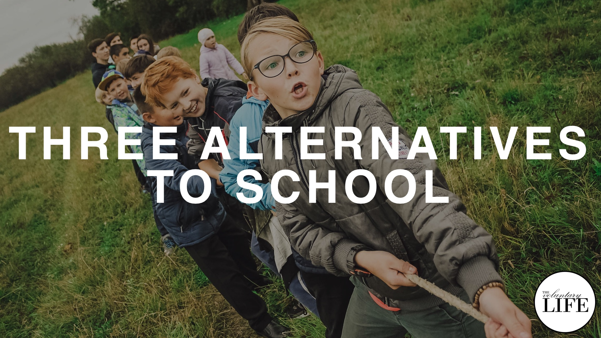366 Three Alternatives To School