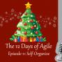 Artwork for 12 Days of Agile - Self-Organize