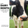 Artwork for Healthy Dairy