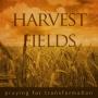 Artwork for Harvest Fields - Praying for Transformation