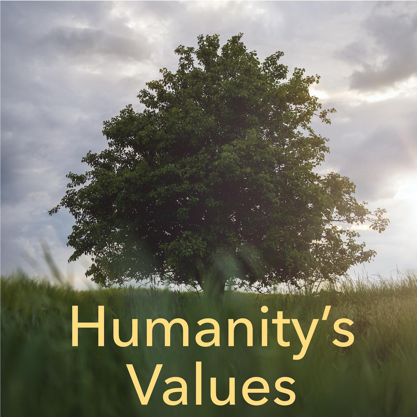 Humanity's Values show art
