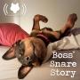 Artwork for Boss' Snare Story