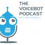 Artwork for Voicebot Podcast Episode 9 - Leading Alexa Game Developer Jo Jaquinta