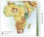 Artwork for African Genetics
