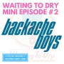 Artwork for WTD Mini Episode 2: Backache Boys