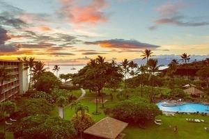 Aloha  Maui.