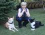 Artwork for 128: Yvette Van Veen, Awesome Dogs + Toronto Star: Journey in Pet Training