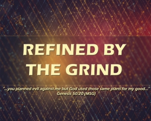 REFINED BY THE GRIND