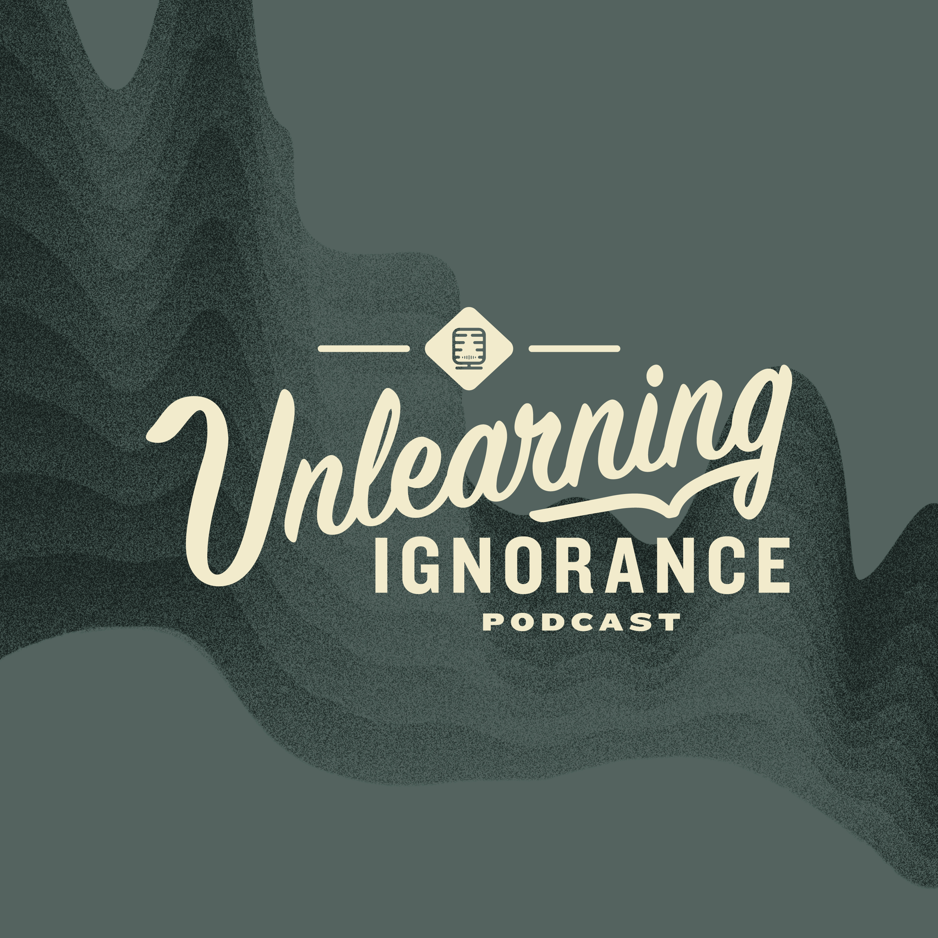 Unlearning Ignorance show art