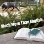 Artwork for Internship Insights in the English Language Program