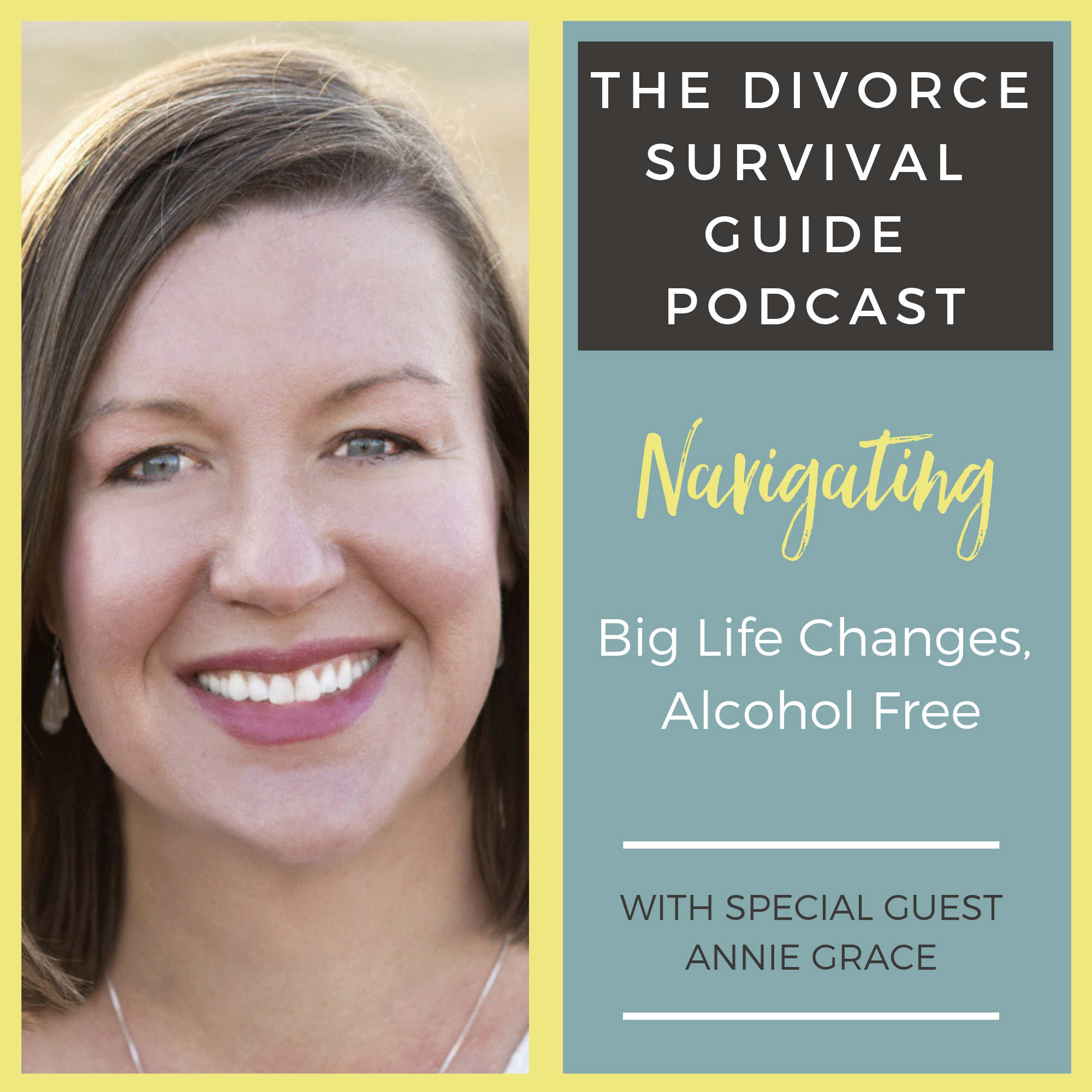 The Divorce Survival Guide Podcast - Navigating Big Life Changes, Alcohol Free with Annie Grace