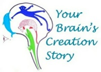 8. Your Brain's Creation Story