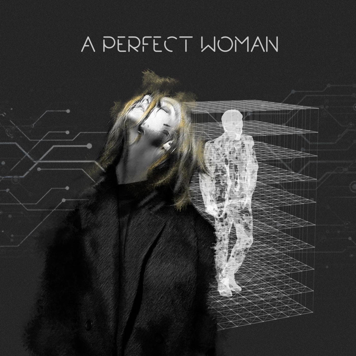 The Perfect Woman   همسر ایده آل