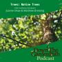 Artwork for Trees: Native Trees