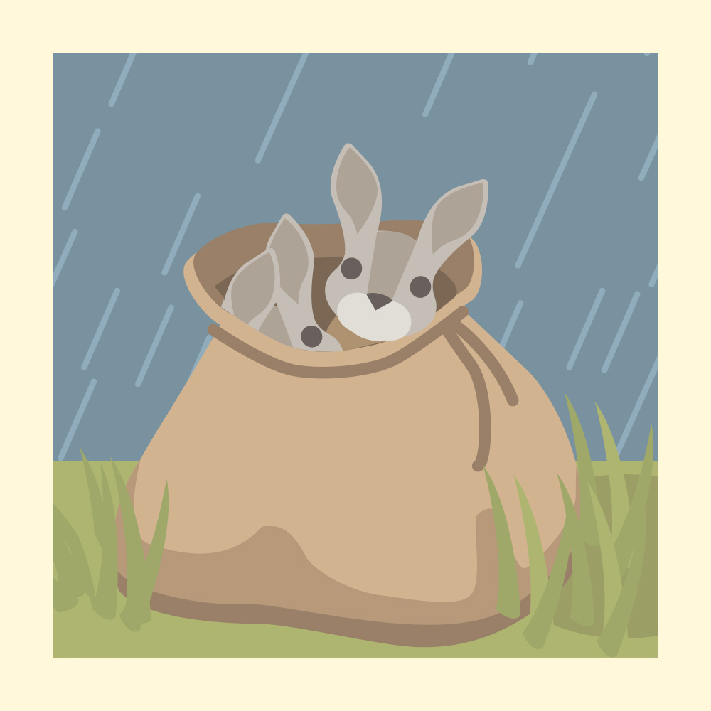 Go on an adventure with the Flopsy Bunnies - Storytelling Podcast for Kids - The Tale of the Flopsy Bunnies::E28
