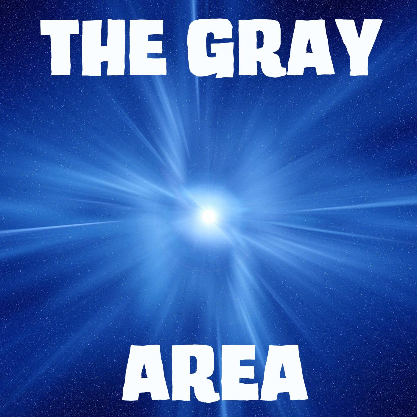 The Gray Area show art