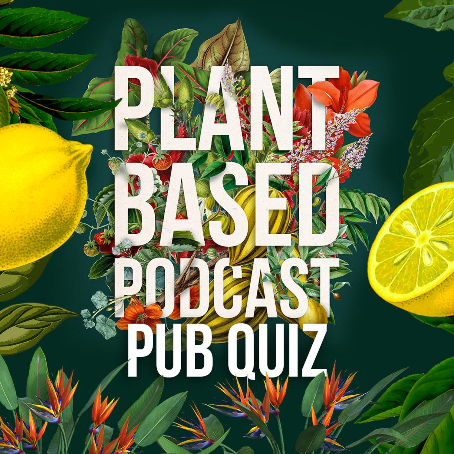 The Plant Based Podcast S3 - Plant Based Pub Quiz