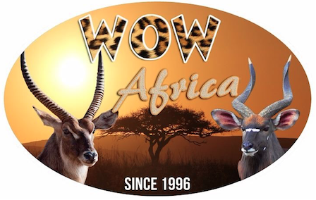 WOW Africa: Safari Adventures in South Africa