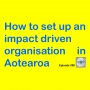 Artwork for How to set up an impact driven organisation