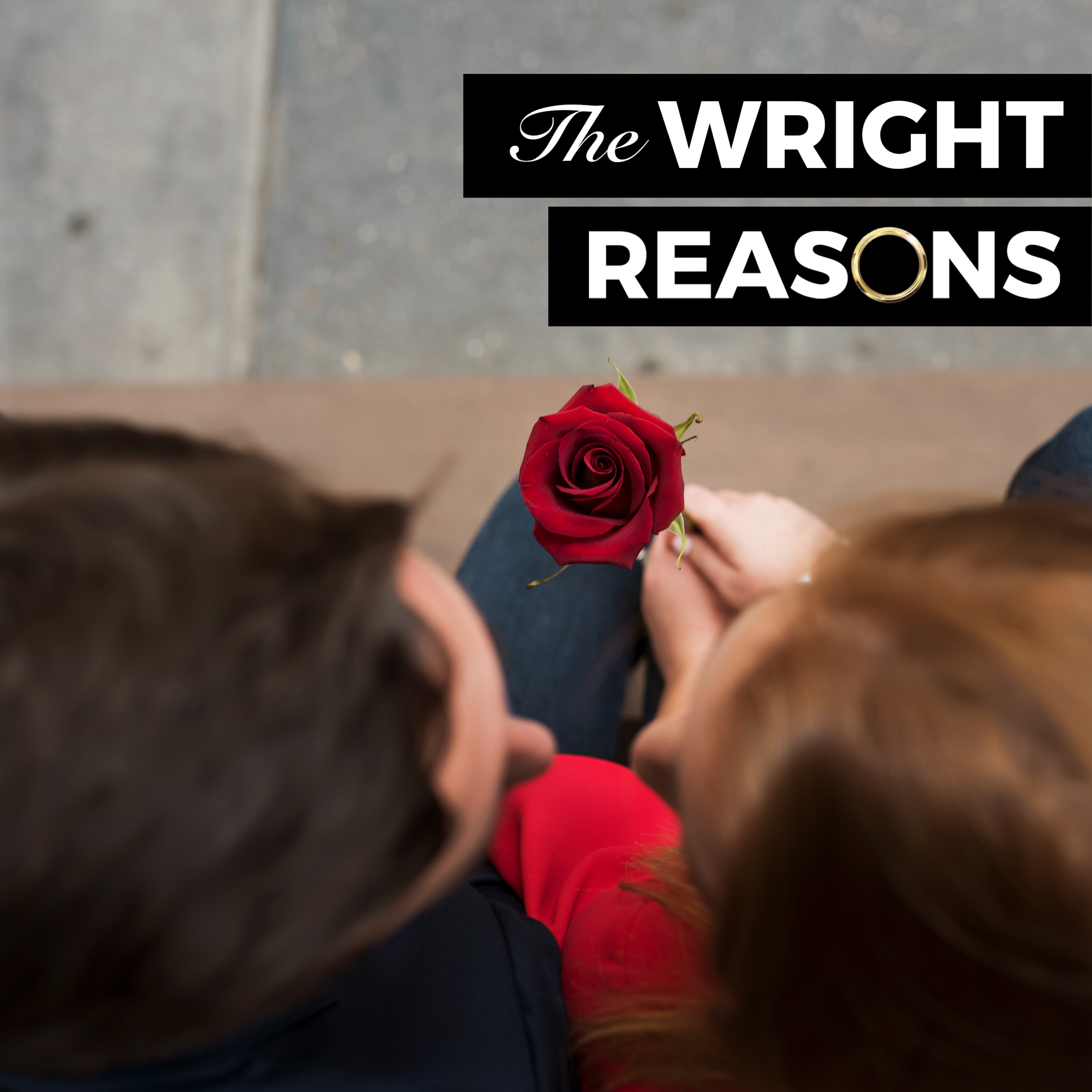 The Wright Reasons show art