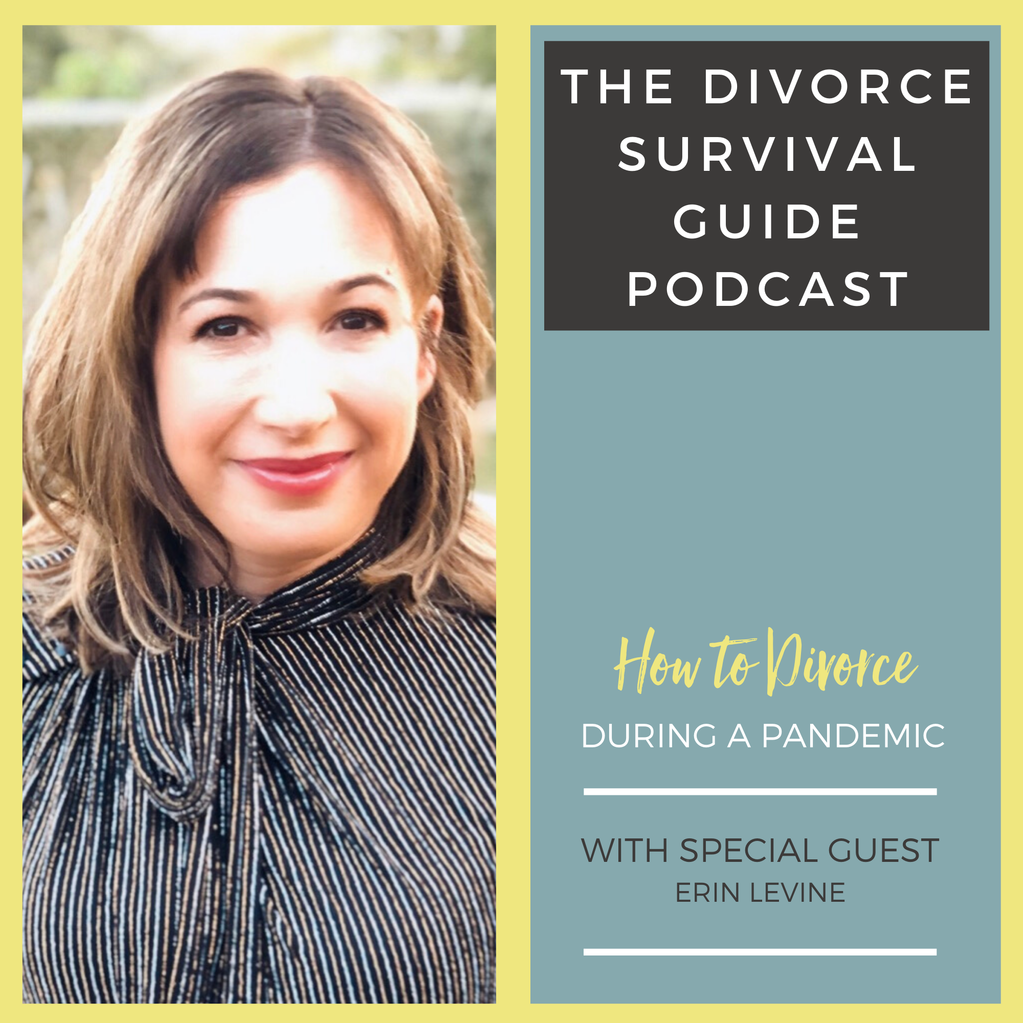 The Divorce Survival Guide Podcast - How to Divorce During a Pandemic with Erin Levine