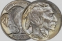 Artwork for 108-121011 In the Treasure Corner - Know Your Coins II - The Buffalo Nickel