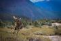 Artwork for Podcast #76: Mountain Bucks, Alaska, & Elk Hunts w/Beau Martonik