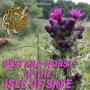 Artwork for Best and Worst of the Isle of Skye #244