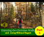 Artwork for Staying On The Path of Christian Fulfillment - Episode 010 (Part 5 Enjoying The Christian Walk and Living Without Regret)