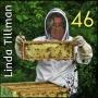 Artwork for Beekeeper Linda - We chat with Linda Tillman - KM046