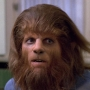 Artwork for Episode 188: Teen Wolf (1985)