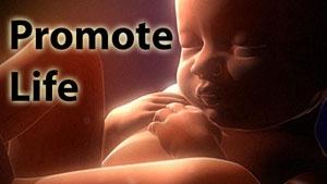FBP 381 - Promote Life
