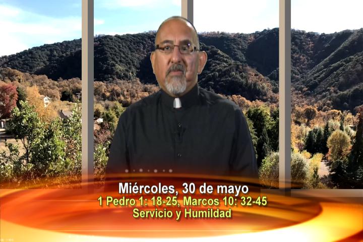 Artwork for Dios te Habla con Fr. Roberto Flores, SVD;  Tema el hoy: Servicio y humildad