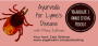 Artwork for Ayurveda for Lyme Disease