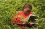 Artwork for Kenya's Economy Takes Off
