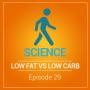 Artwork for Low Carb Diets Versus Low Fat Diets
